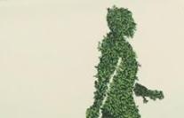 PSG посприяла зеленій модернізації економіки у проекті для Торгово-Промислової Палати