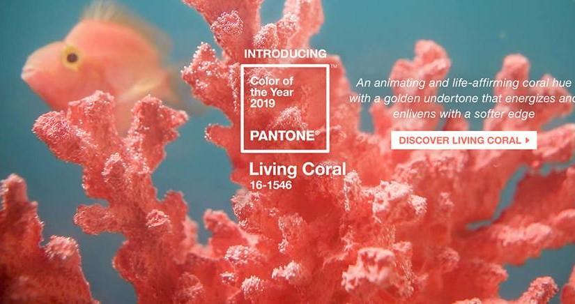 Pantone визначив відтінок, який стане найактуальнішим у 2019-му
